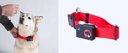 SpotLight GPS Pet Locator for iPhone