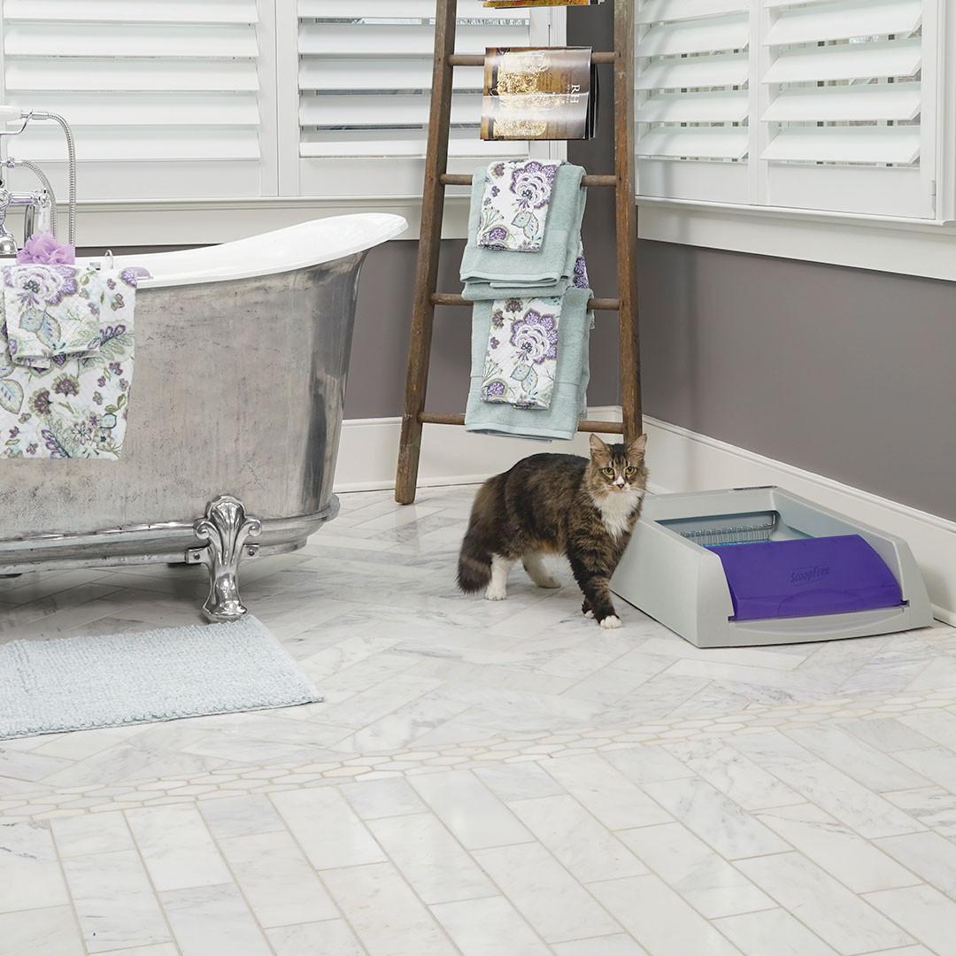 PetSafe ScoopFree Self-Cleaning Cat Litter Box