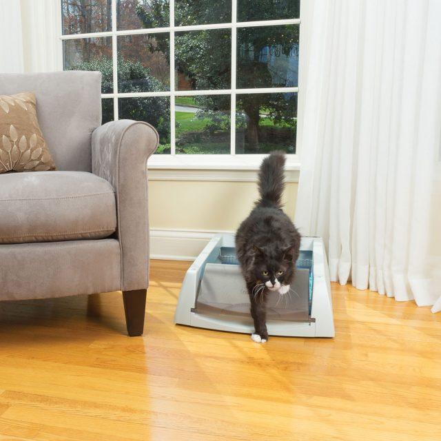 PetSafe ScoopFree Self-Cleaning Cat Litter Box Main