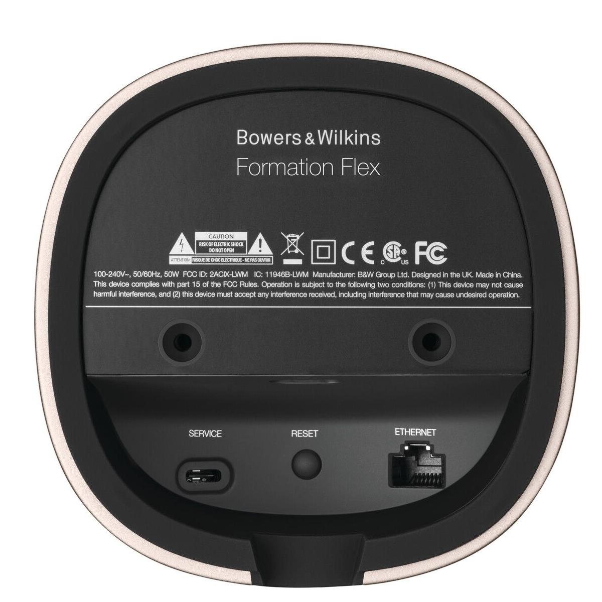 Bowers and Wilkens Fomartion Flex Speaker