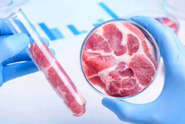 In Lab-Grown Meat at SEAS Main
