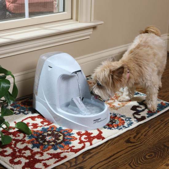 PetSafe Drinkwell Platinum Pet Fountain Main