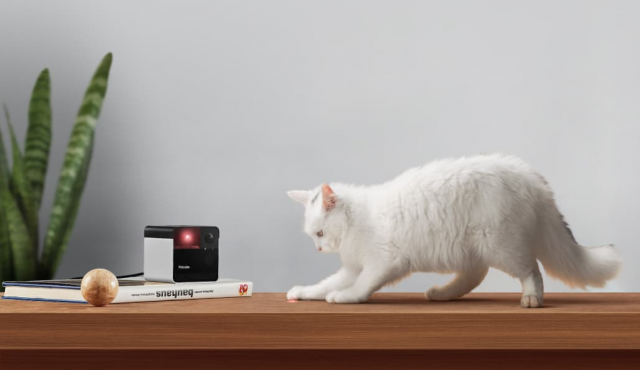 Smart Pet Camera