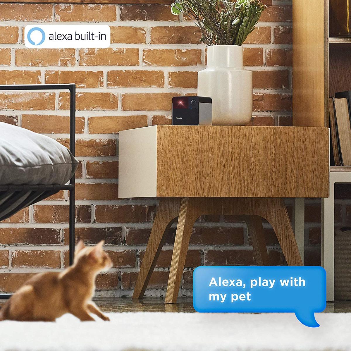 Petcube 2 Alexa Integration