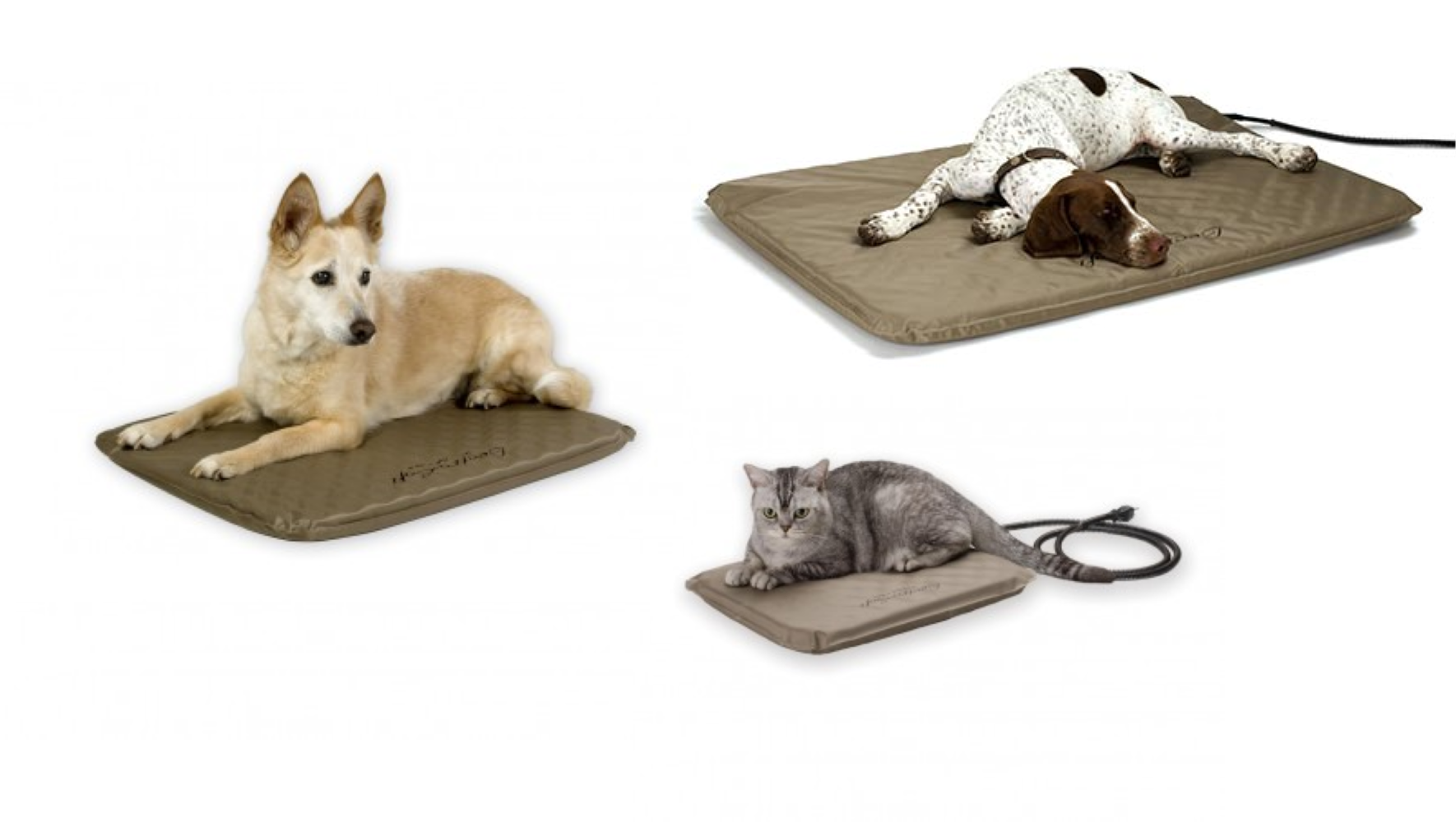 Lectro-Soft Heated Pet Bed - All Sizes