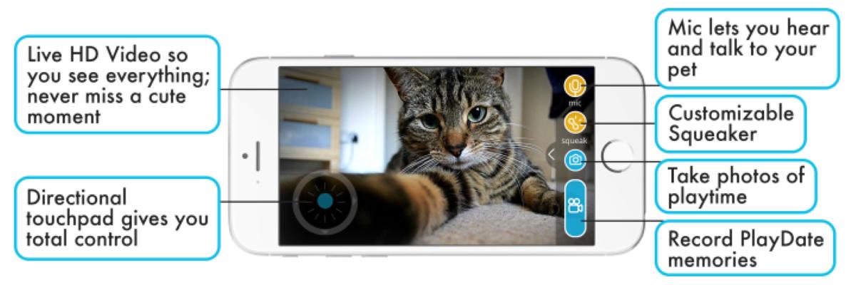 Playdate Pet Smart Ball - Smartphone App