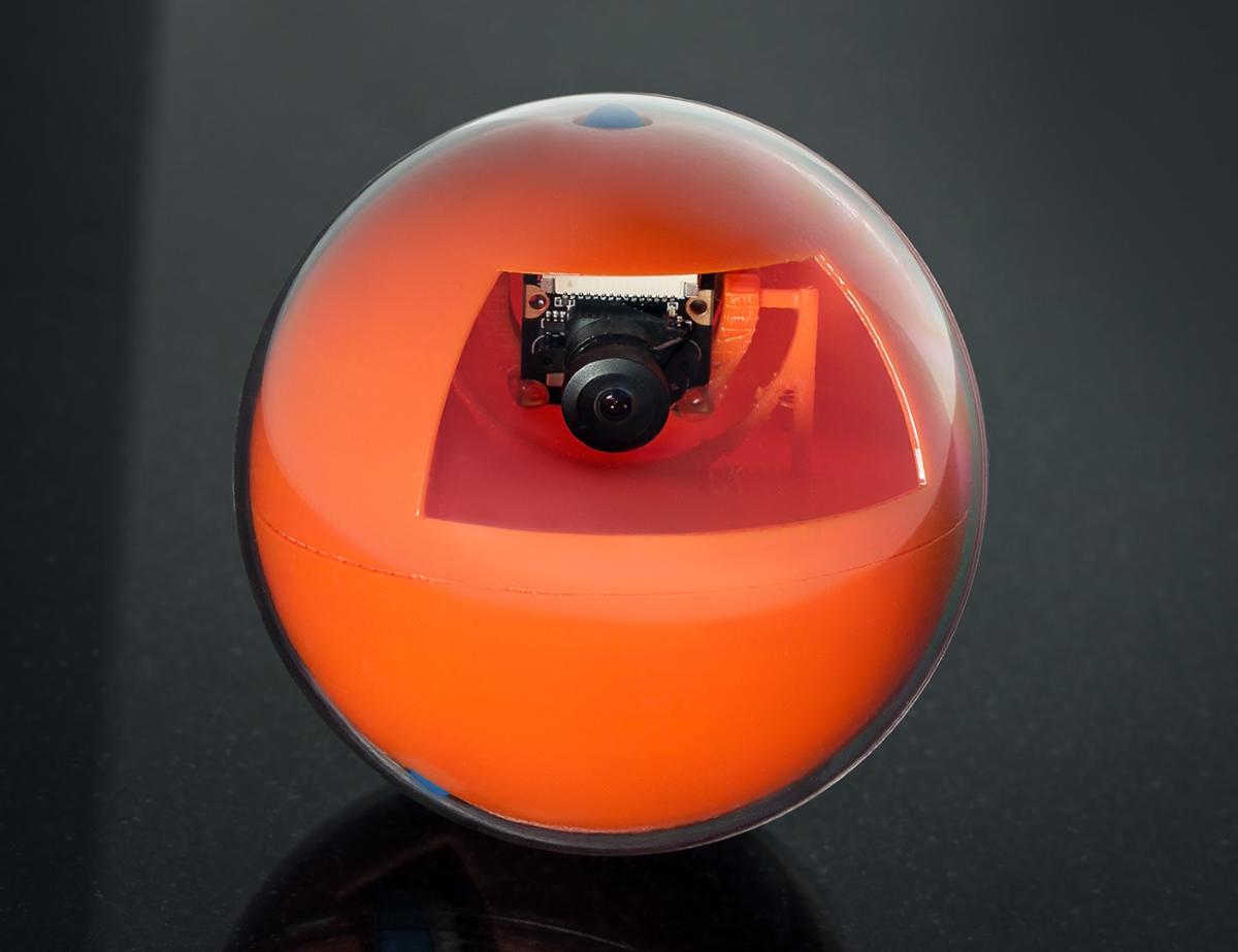 Playdate Pet Smart Ball - Design (1)