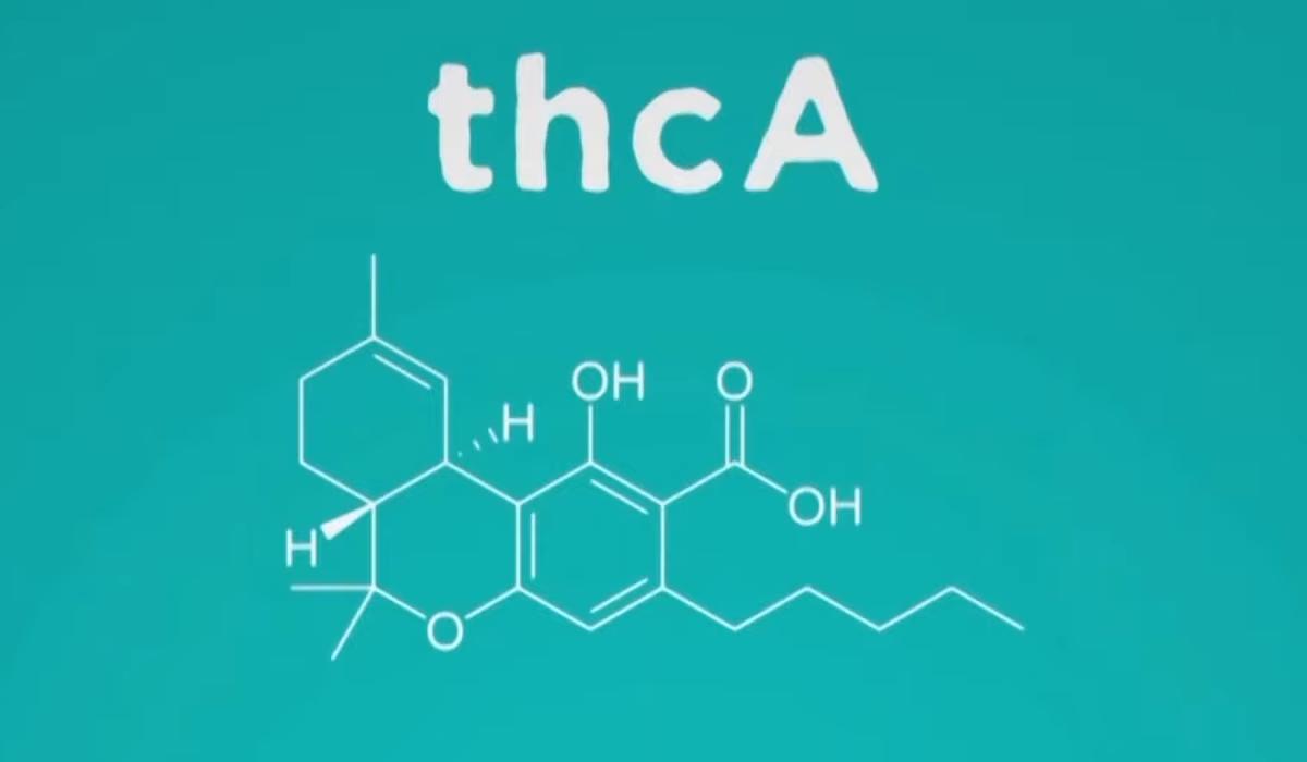 Ardent Nova - THCa Molecule (Percursor Form)