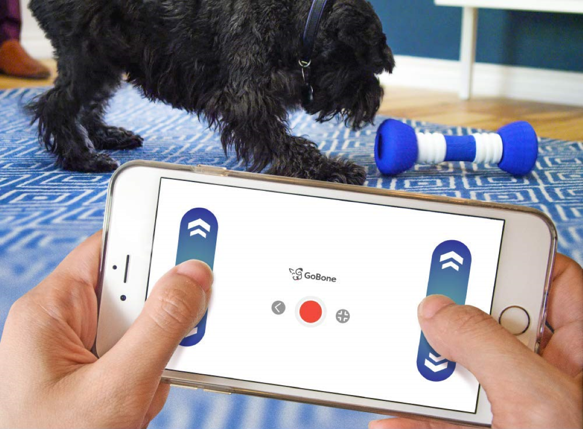 GoBone Interactive Dog Toy - Easily Controlled via its Smartphone App