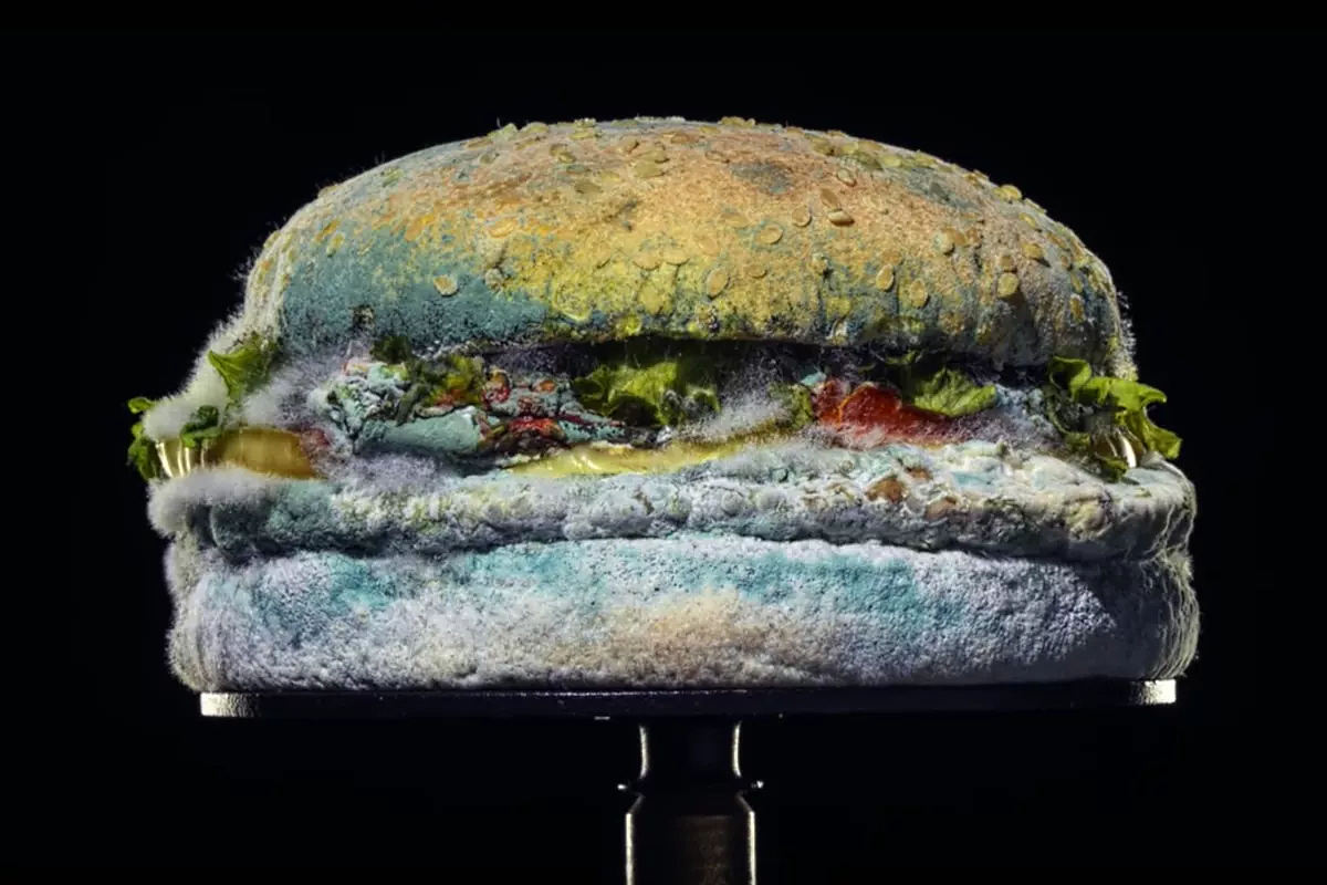 Burger King's new TV ad - The Moldy Whopper