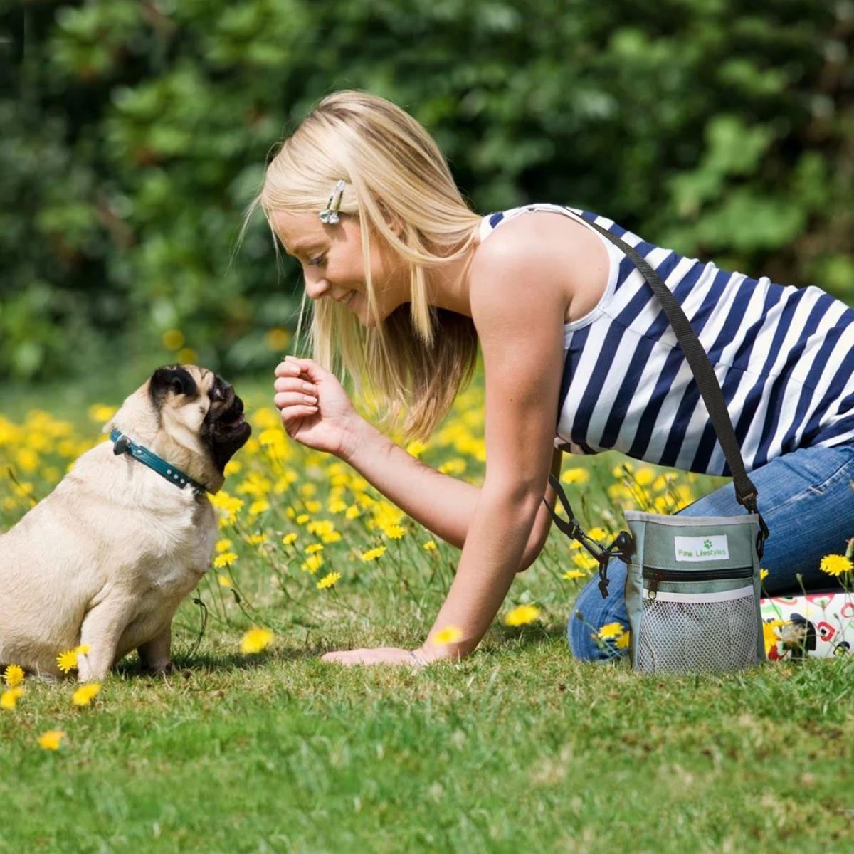 Paw Lifestyles Dog Treat Training Pouch
