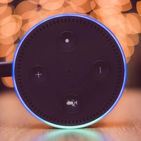 Amazon Alexa & Google Assistant Support