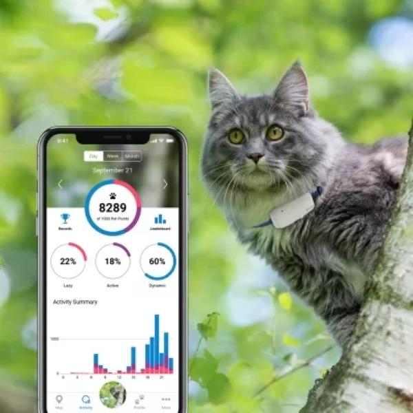 Tractive IKATI Cat GPS Tracker - Activity Monitoring
