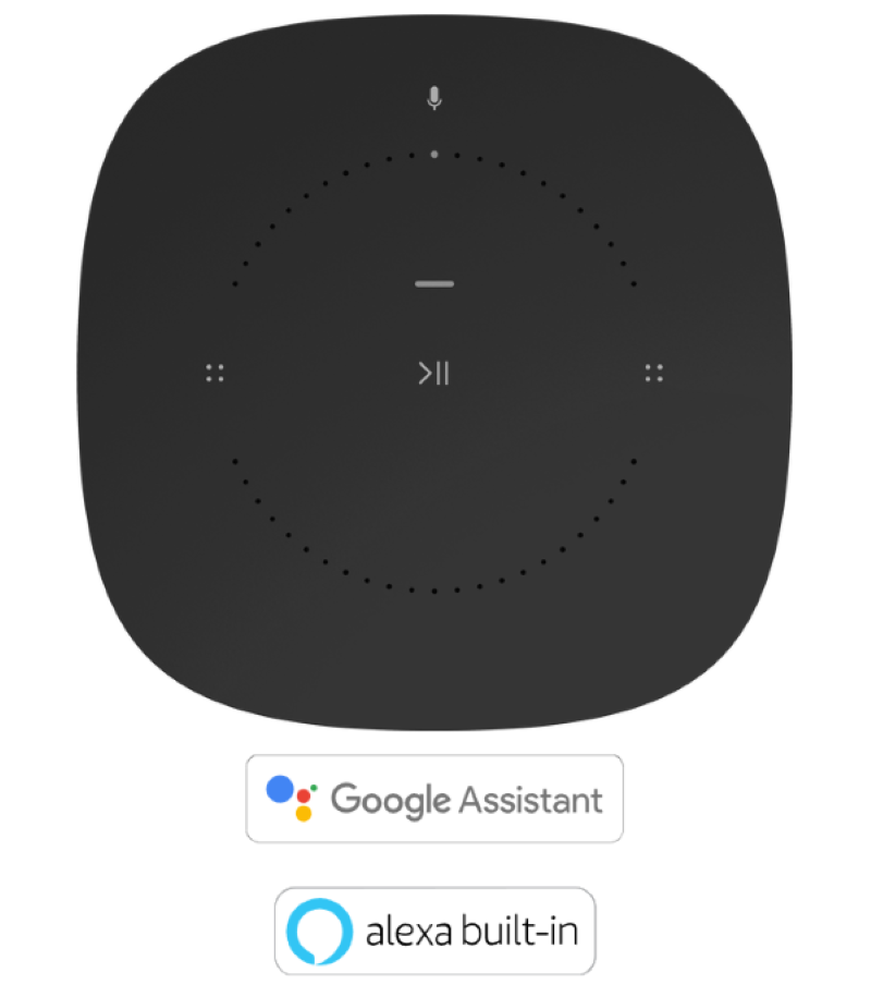 Voice Assistant Support for the Google Assistant and Amazon Alexa