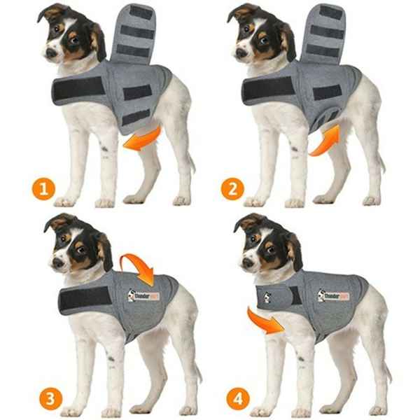 How to dress it / fit it on your dog? - Method 2