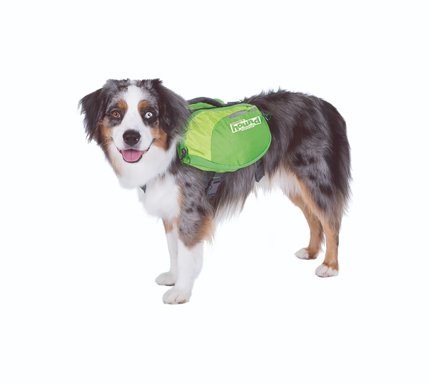 Equipped w/ Adjustable Straps for a secure fit & Reflective Piping Accents w/ Vibrant Colors for enhanced visibility for your dog