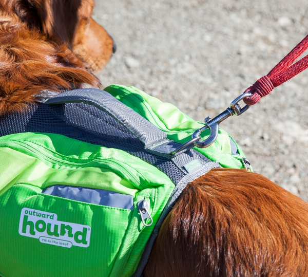 Equipped with 4 Expandable Pockets & a D-Ring Leash Clip