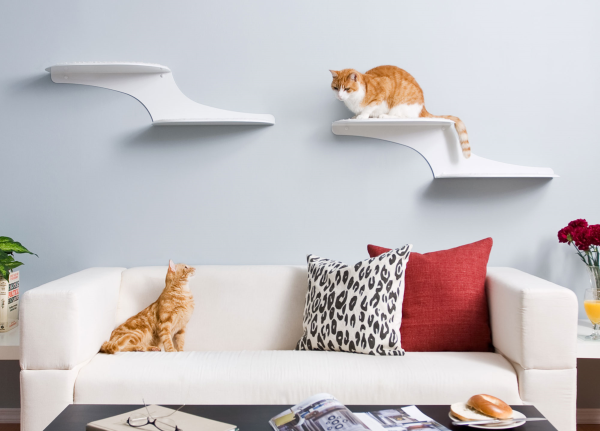 Refined Feline Cat Cloud Cat Shelves