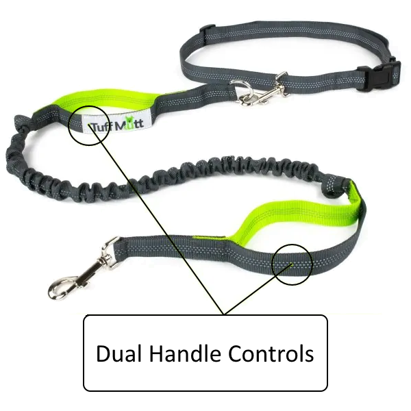 Equipped with Dual Handles for extra control of your pup