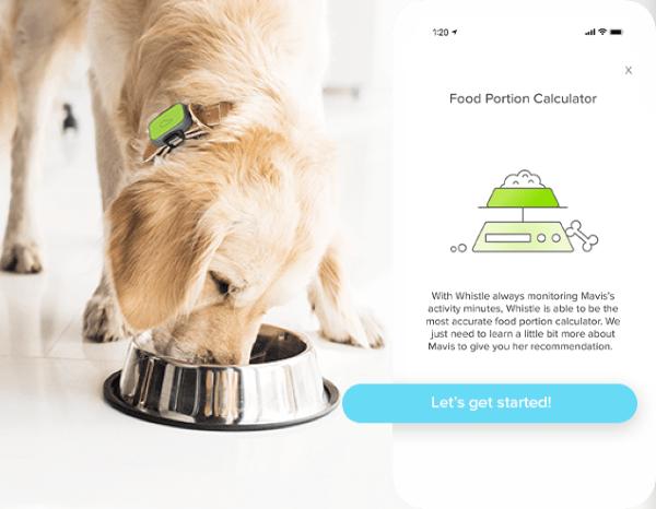 Food Portion Calculator