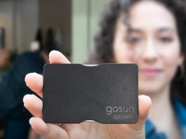 GoSun Flatware