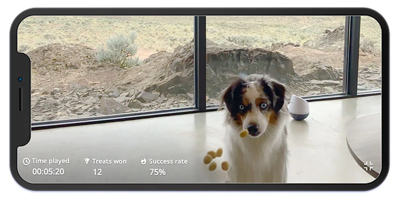 PupPod App (Video Feature)