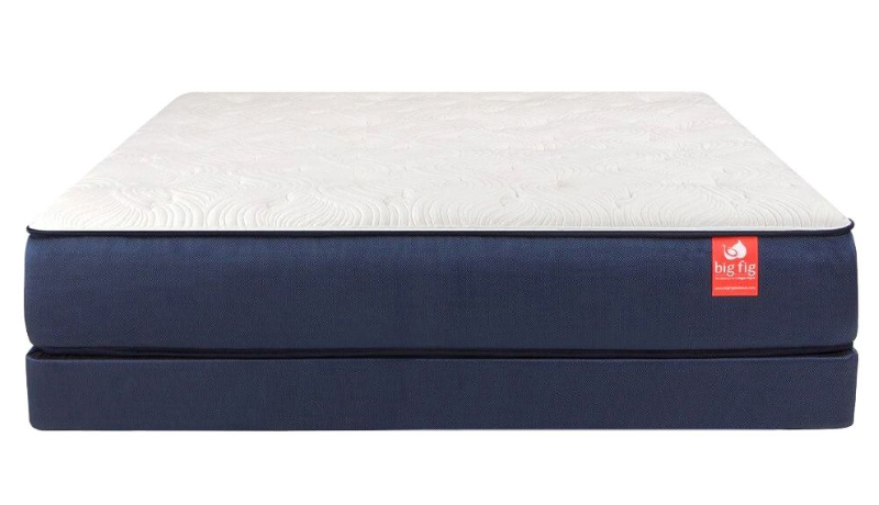Big Fig Mattress + Foundation