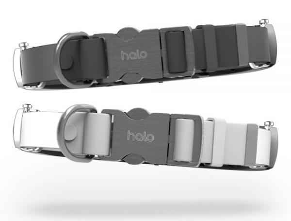 Halo Collar