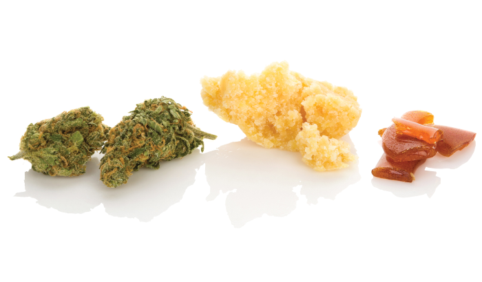 Different Uses of Rosin