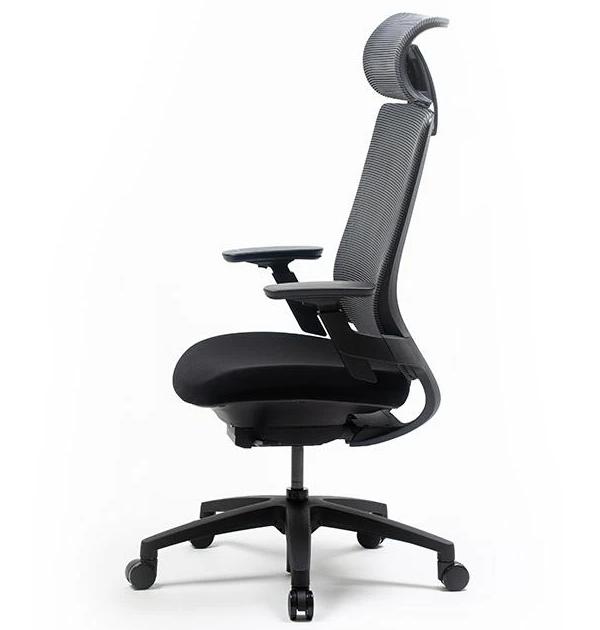 Nexvoo Health Adjustable Desk Chair